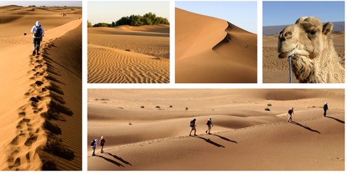 kreuzfahrt aegypten rundreisen