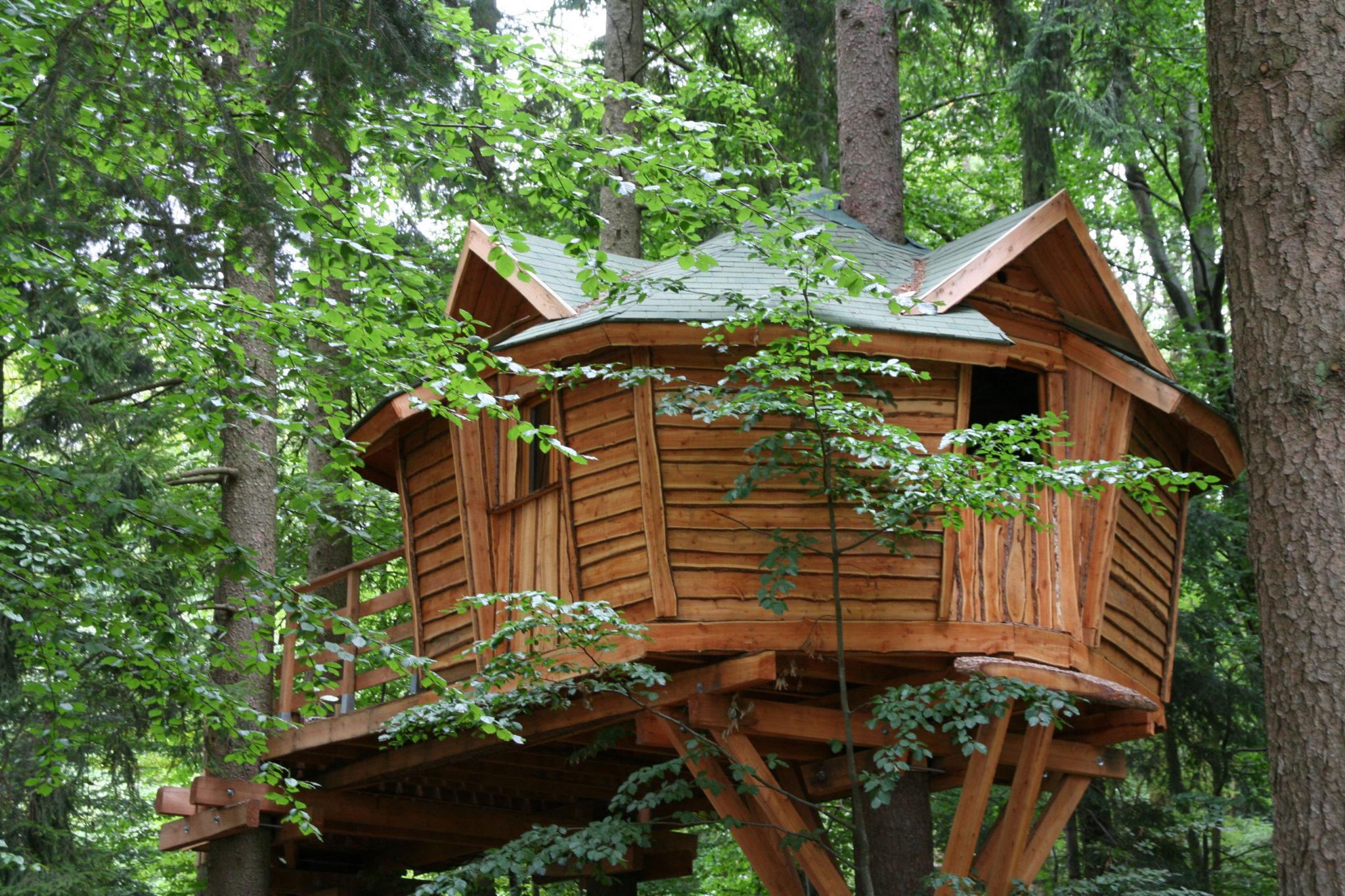 Außergewöhnliche Übernachtungen Baumhaus