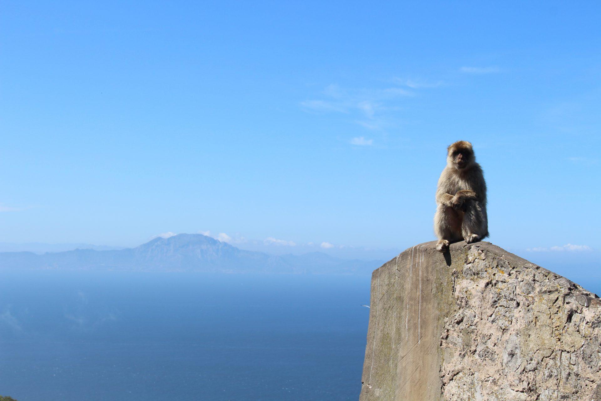 Gibraltar Mietwagen Fly und Drive ab 329€ 9 Tage 1