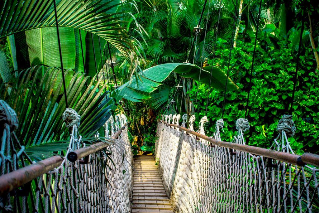 Kurzurlaub im Palmenparadies Sinsheim ab 69,00€ statt 149,00€