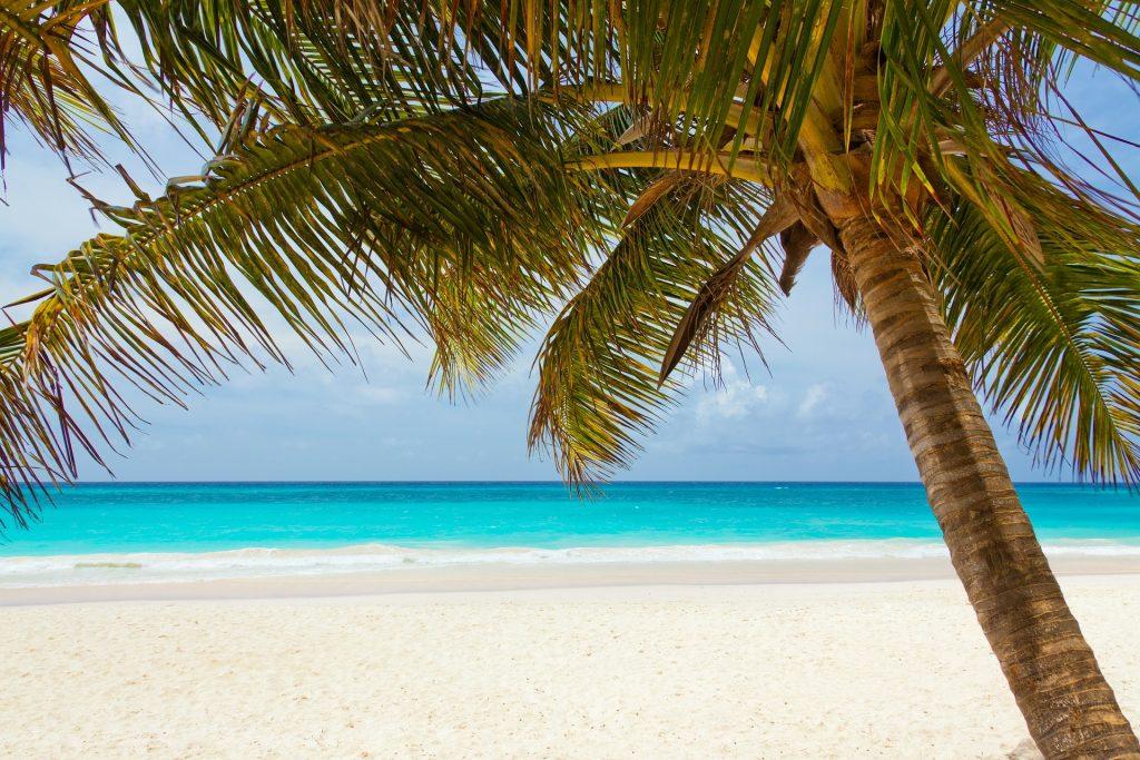 Alles Inclusive Dominikanische Republik günstig ab 793,00€ - Eine Woche