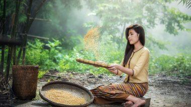 Myanmar Reise nach Yangon günstig ab 824,00 €  Südostasien 1