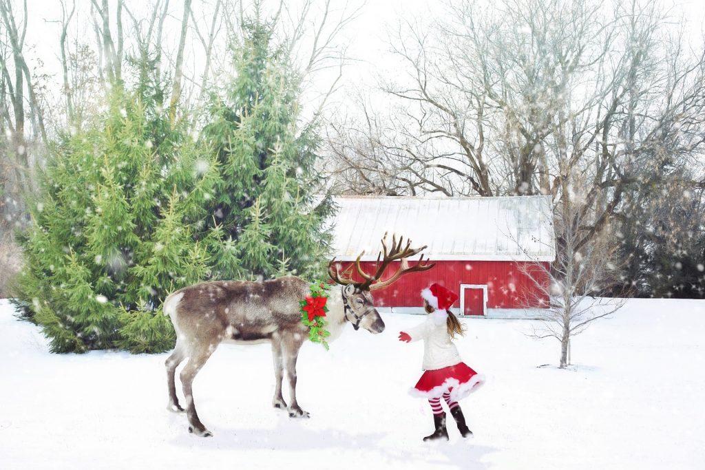 Reise zum Weihnachtsmann - günstig Reisen nach Finnland