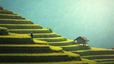 Bali reise günstig Flüge + Hotel + Frühstück ab 597,00€ 1