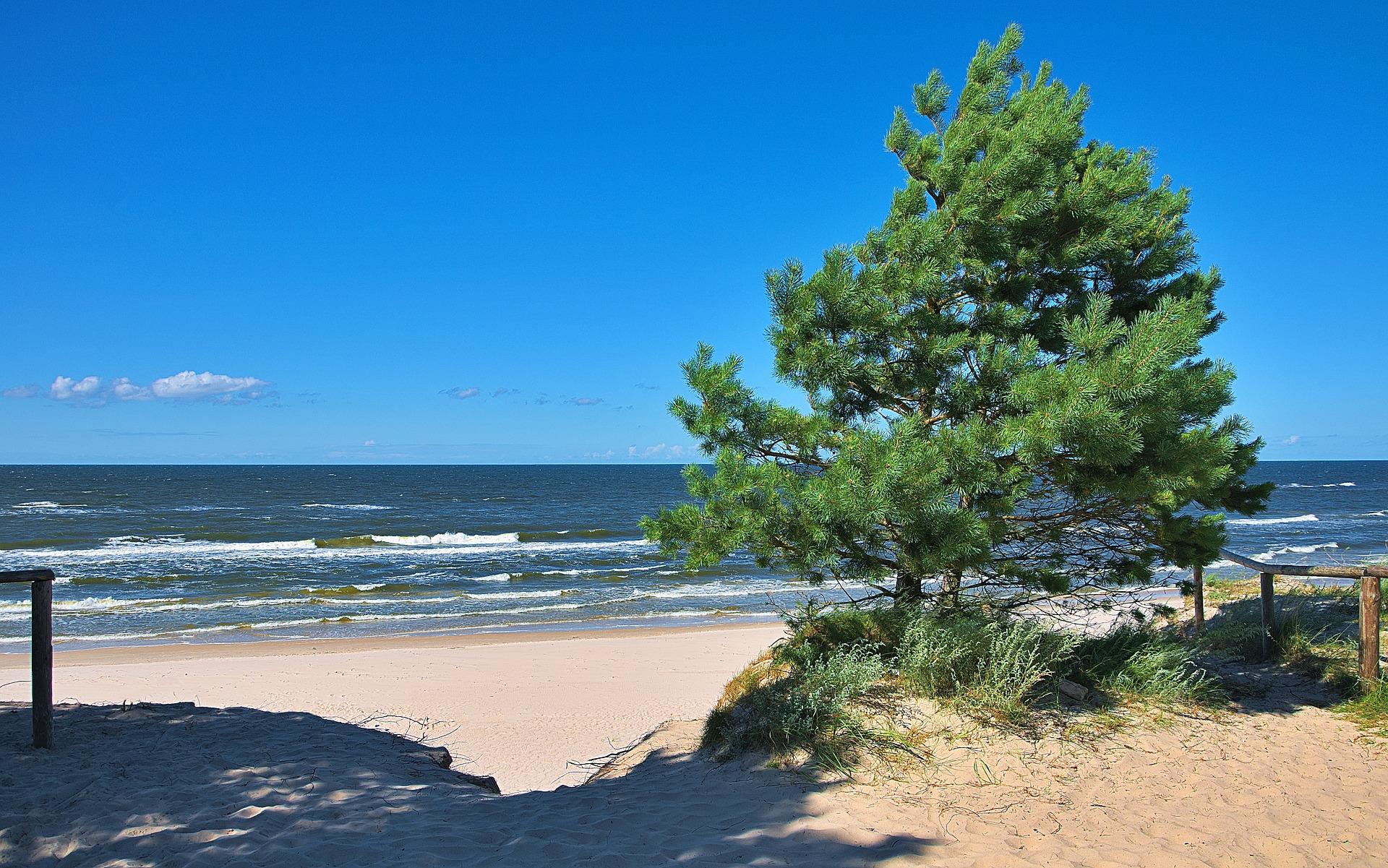 Strand in Danzig Städte Reise & im Sommer Badeurlaub