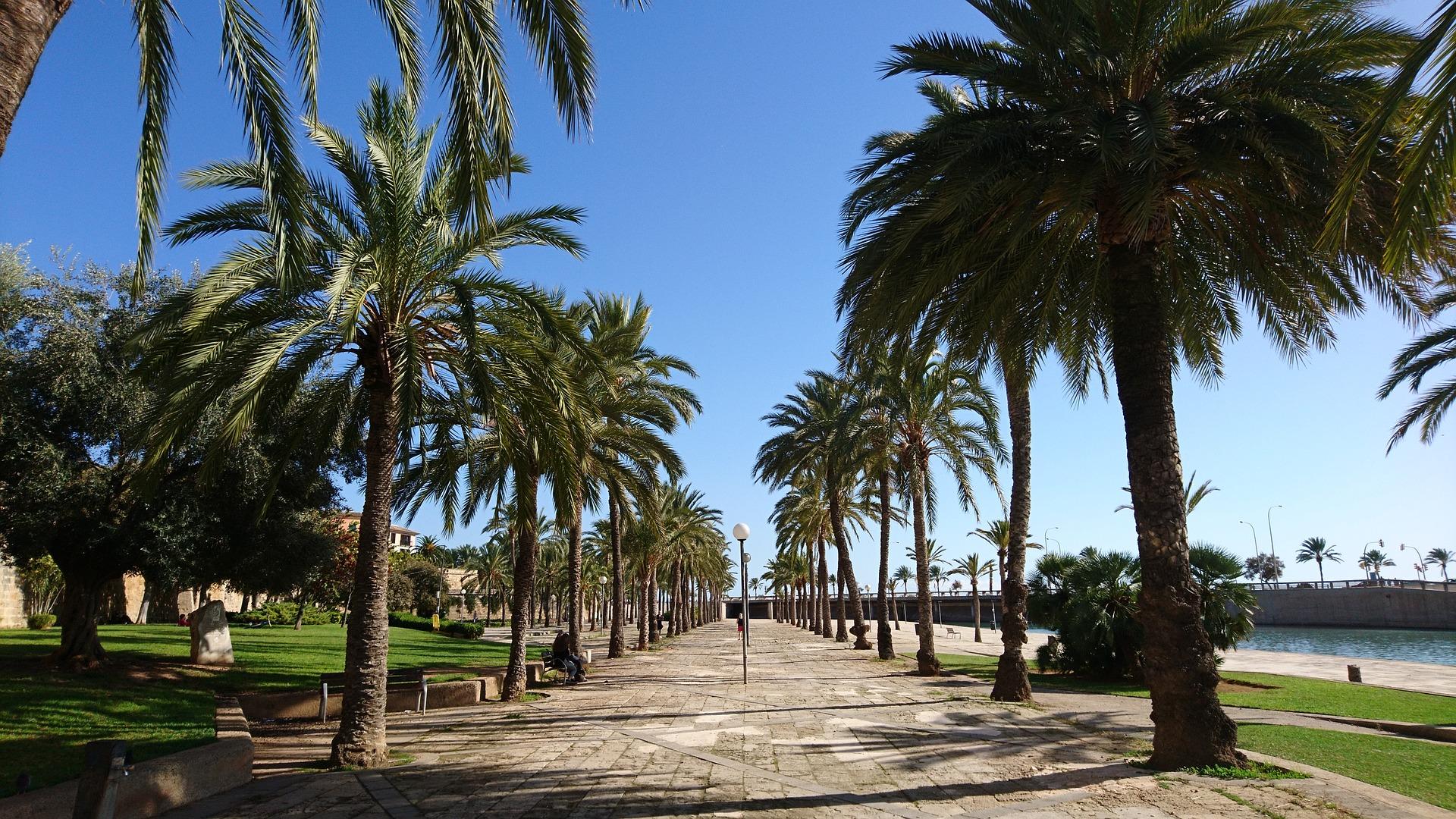 Strandpromenade auf Palma de Mallorca