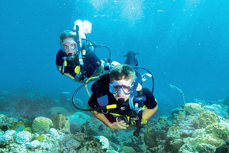 Tauchen im Malediven Urlaub auf Kaafu - Süd Male Atoll