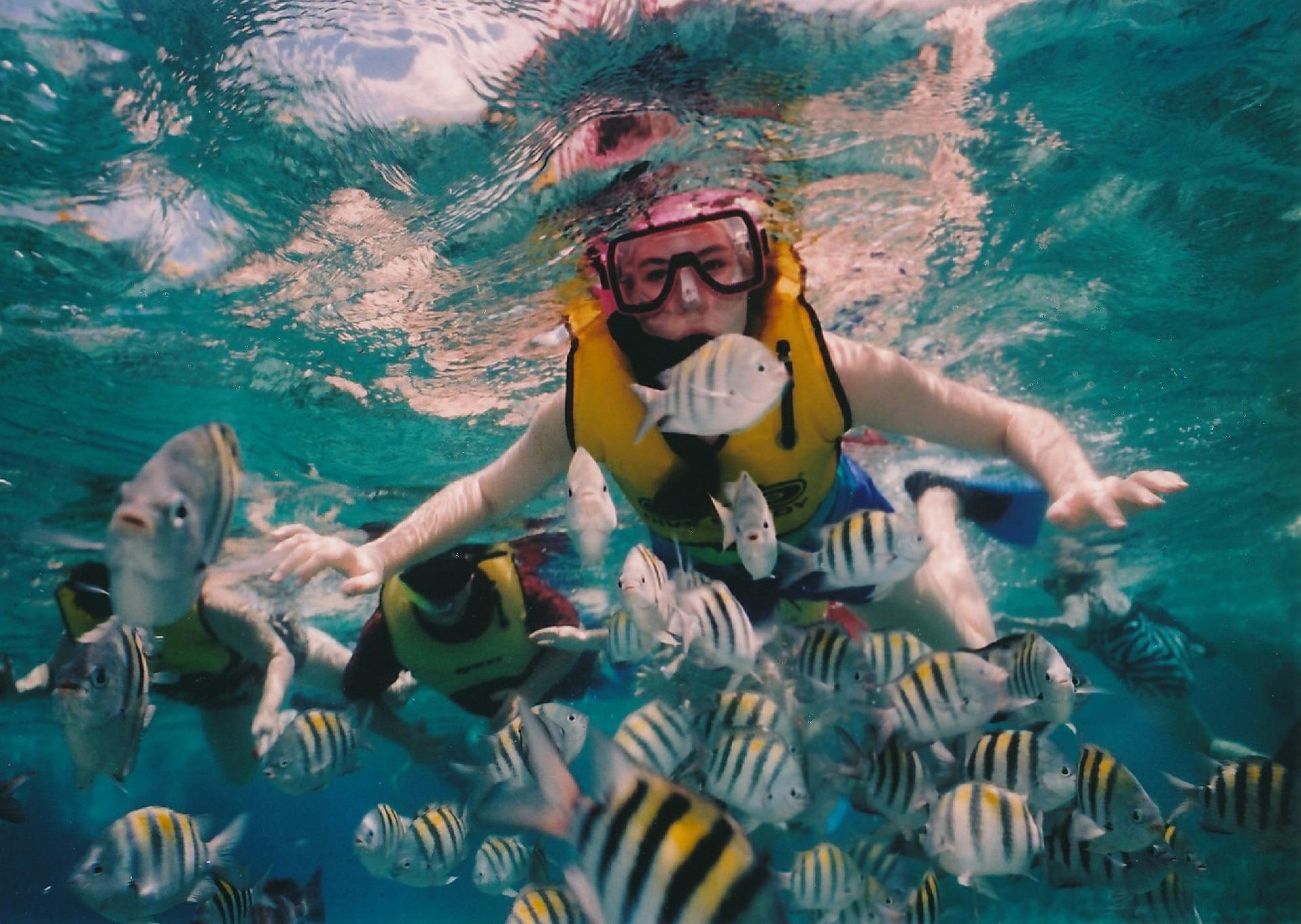 Das Unterwassermuseum Cancun wurde erschaffen um die Taucher von der gefährdeten Natur umzuleiten