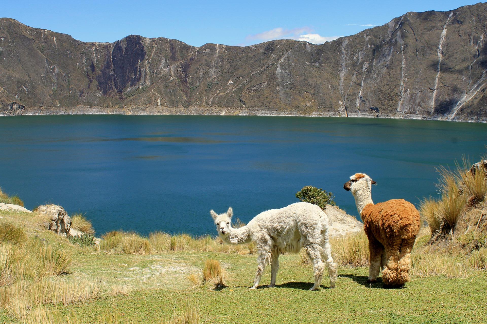 Galapagos Inseln Rundreise - Teufelnase Ecuador Andenbahn bis Bootfahrten
