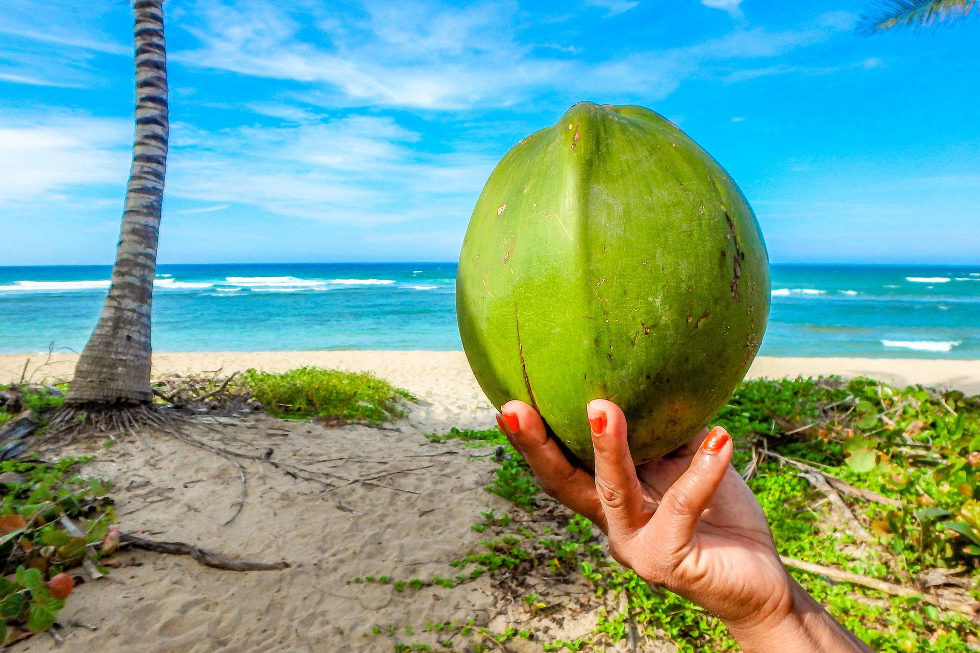 Seychellen Halbpension Buchen und die Inseln entdecken