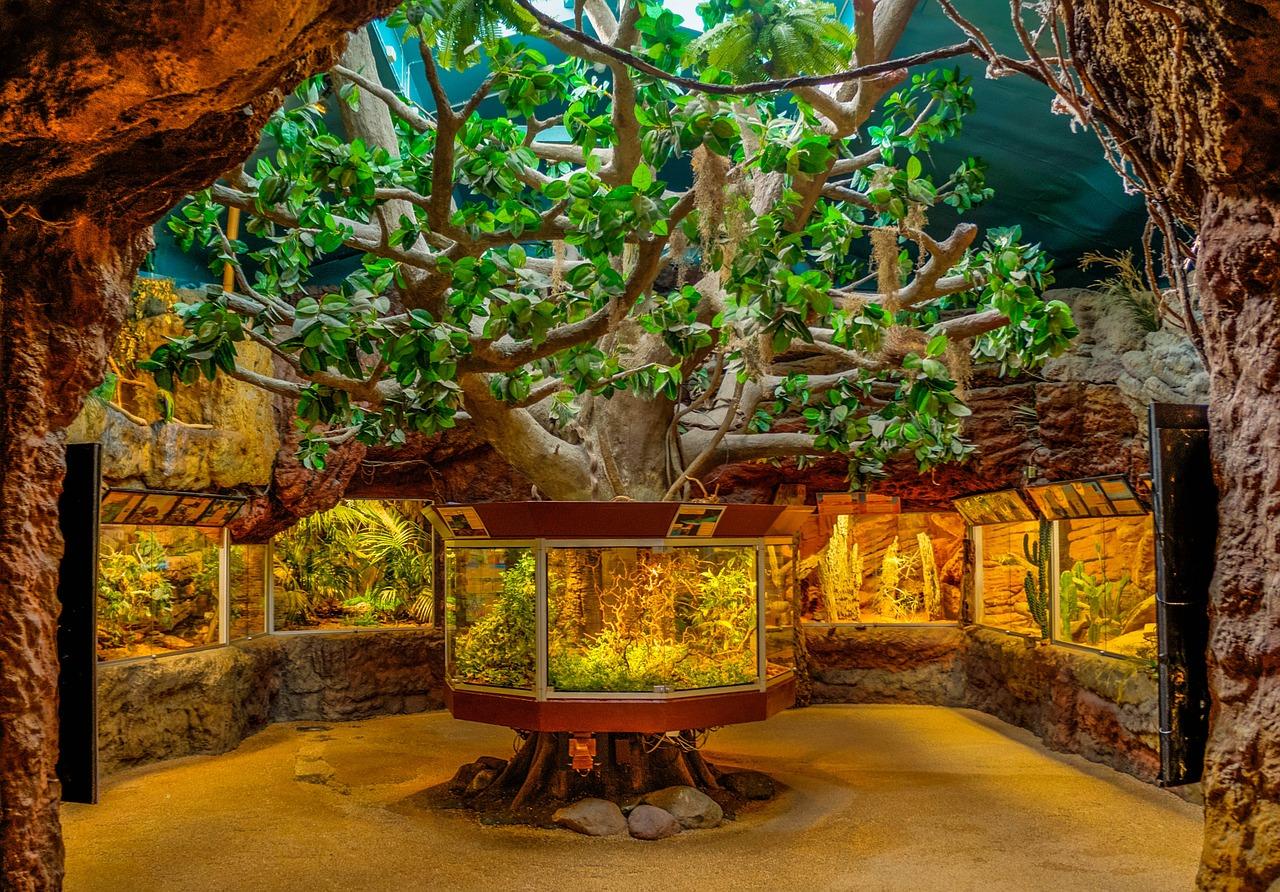 Aquarium im Park Skansen