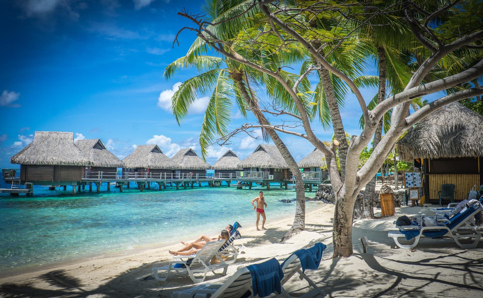 Buche deinen Urlaub2019 bei den besten Reiseveranstaltern auf dem Markt