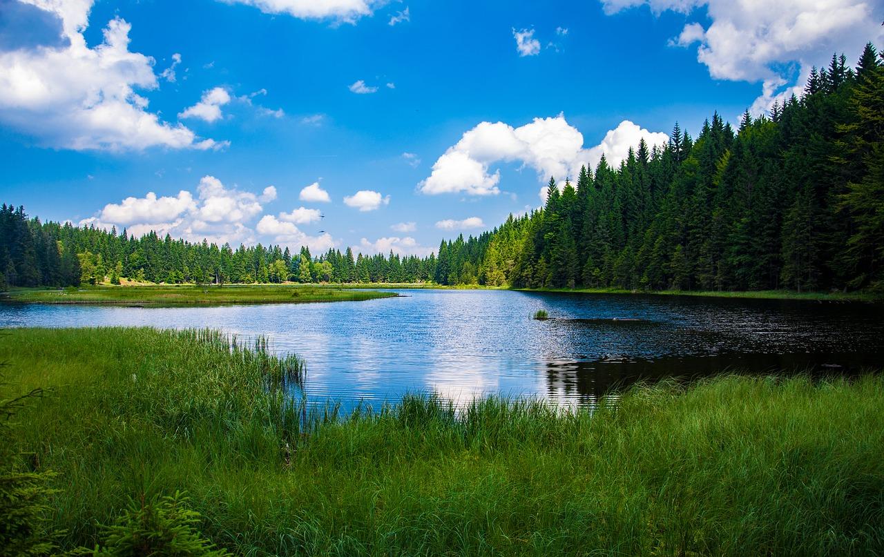 Hohenwarth Wellnessurlaub im Bayrischen Wald günstig ab 39,00€ All Inclusive