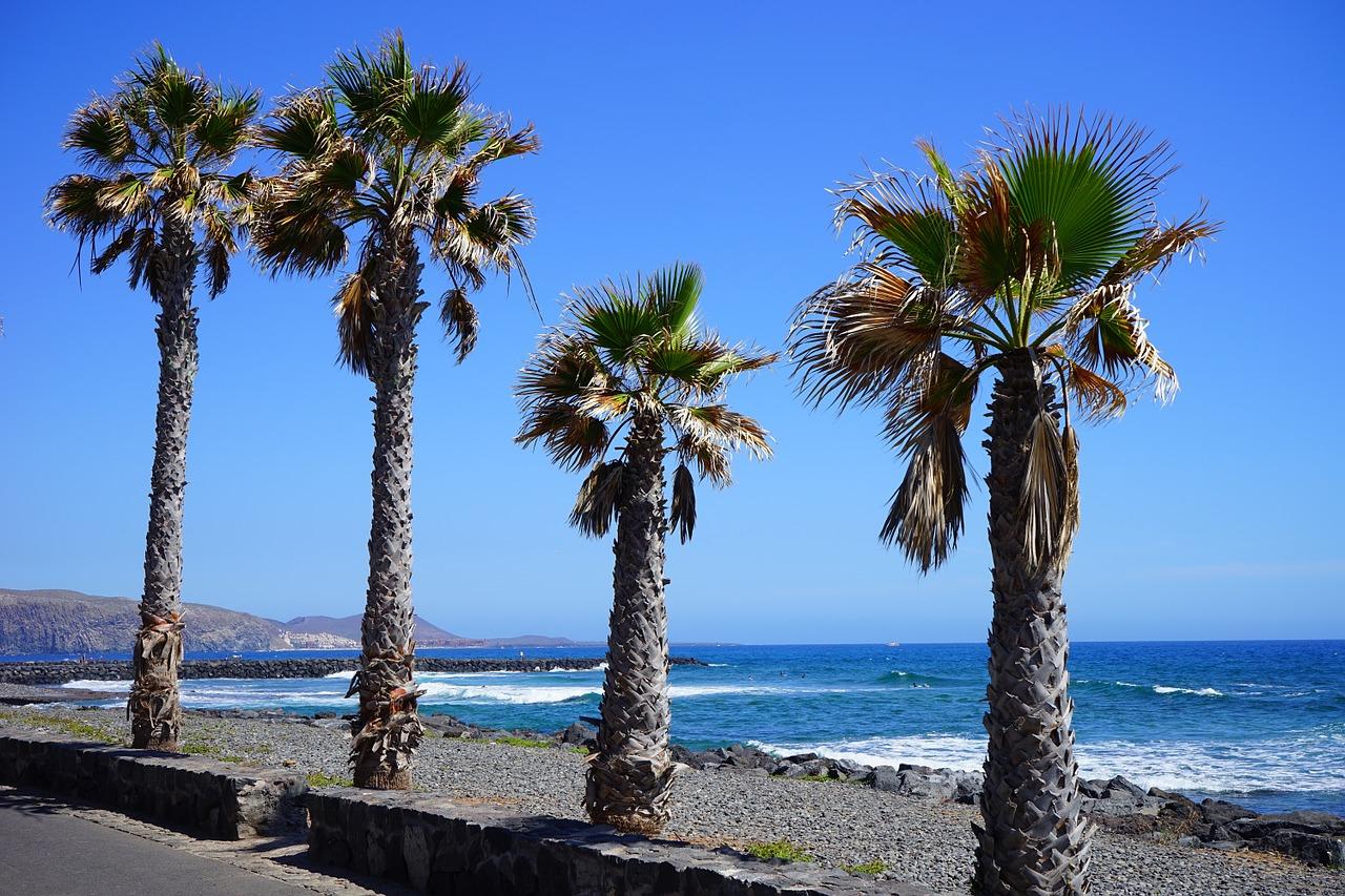 Promomenade des Playa de las Americas