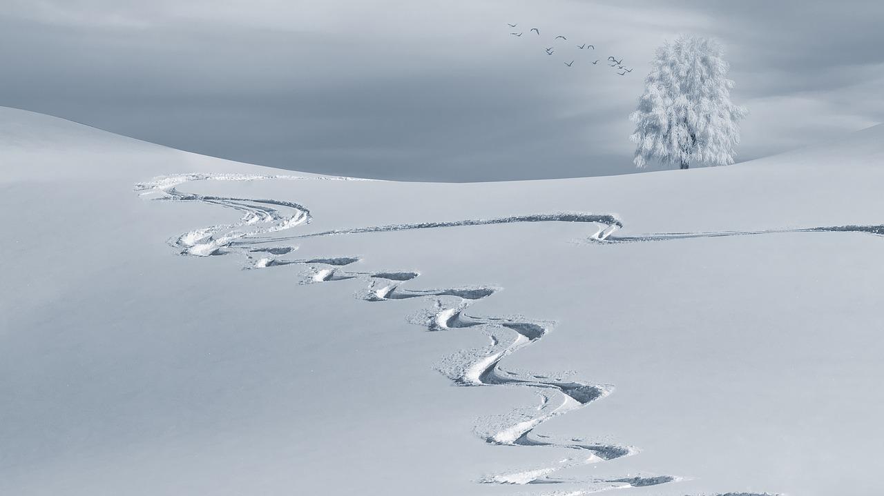Angebote für den SkiurlaubAngebote für den Skiurlaub