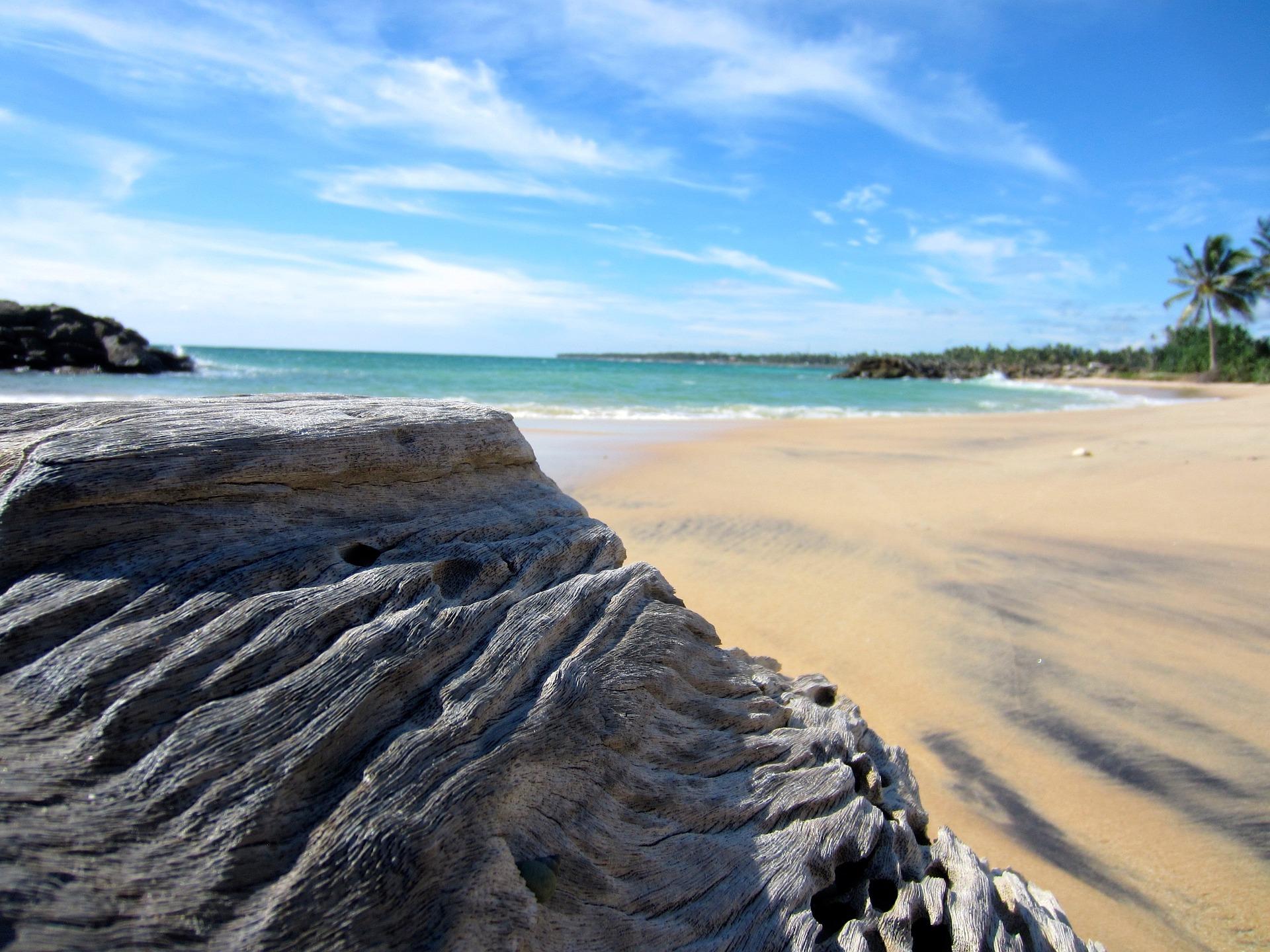 Langzeitreise Sri Lanka ein Monat das Land Erkunden
