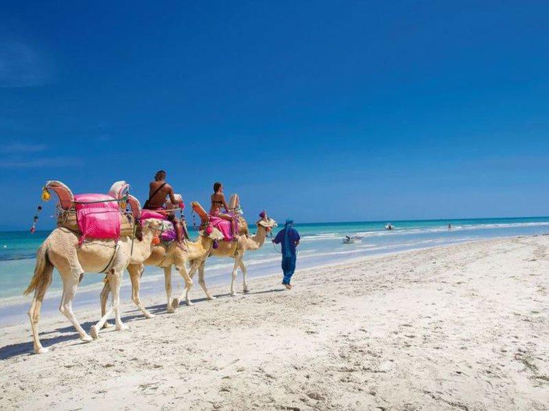 Urlaub auf Djerba Tunesien eine Woche Pauschal Deals ab 225,00€