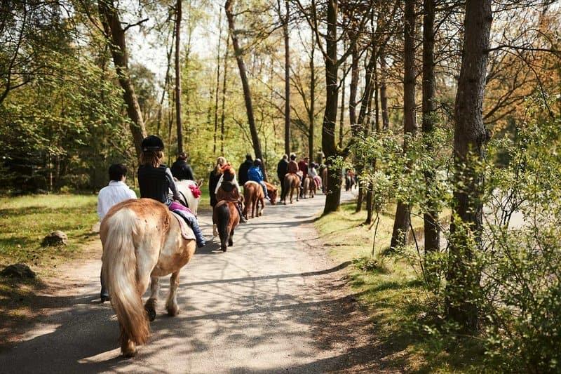 America reiten im Center Parc Holland