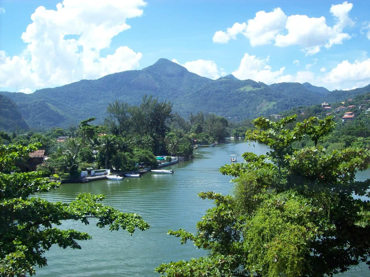 Barra da Tijuca - Regenwald ( Nationalpark )