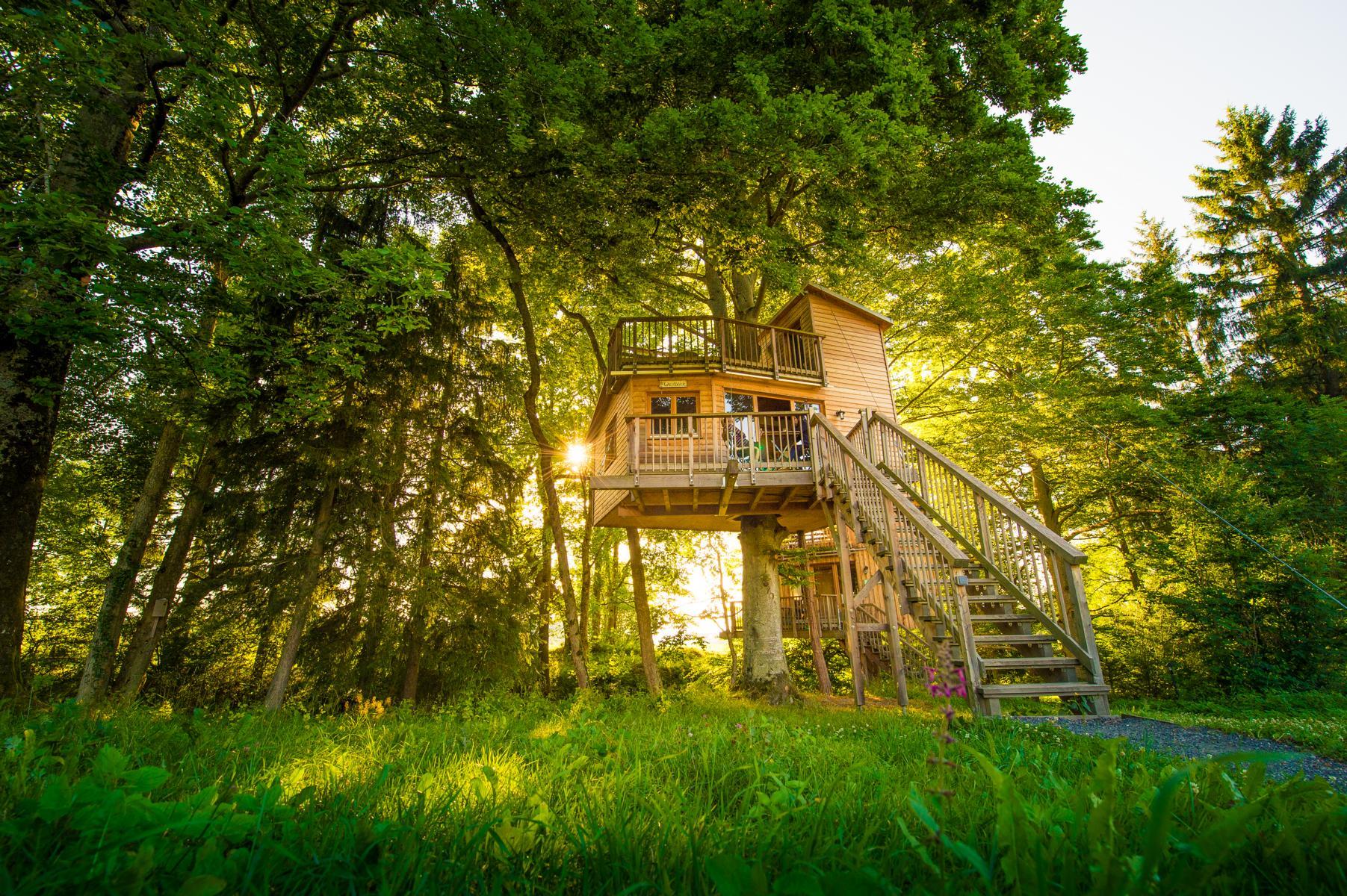 Das Baumhaus Hotel im Allgäu - so geht Campen Heute