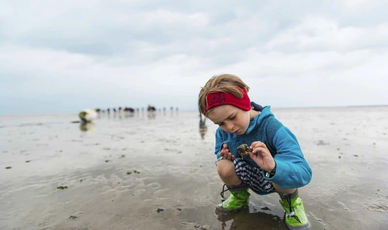 Für die Kinder ist es ein einmaliges Erlebnis im Center Parcs Nordseeküste - am Wattenmeer