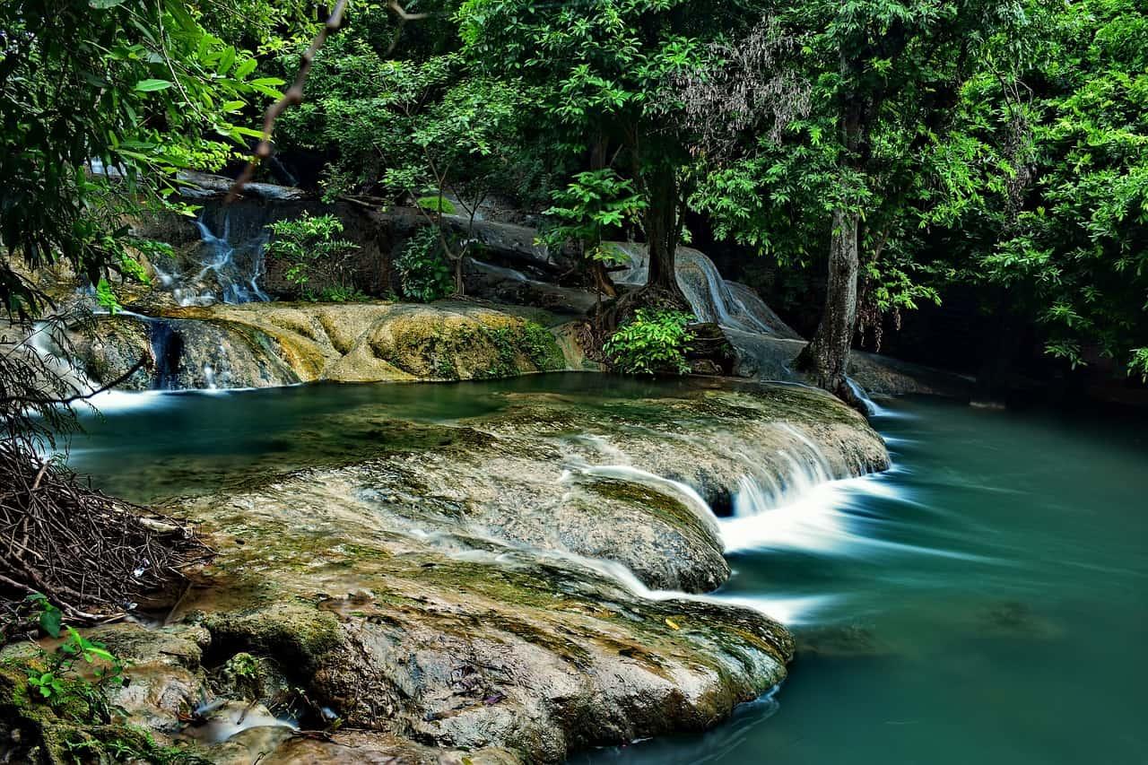 In den Nationalparks während der Malaysia Rundreise