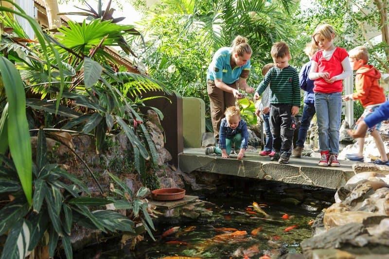 In den Niederlanden findet Ihr im Aqua Mundo fast immer echte Fische wie in America bei Limburg