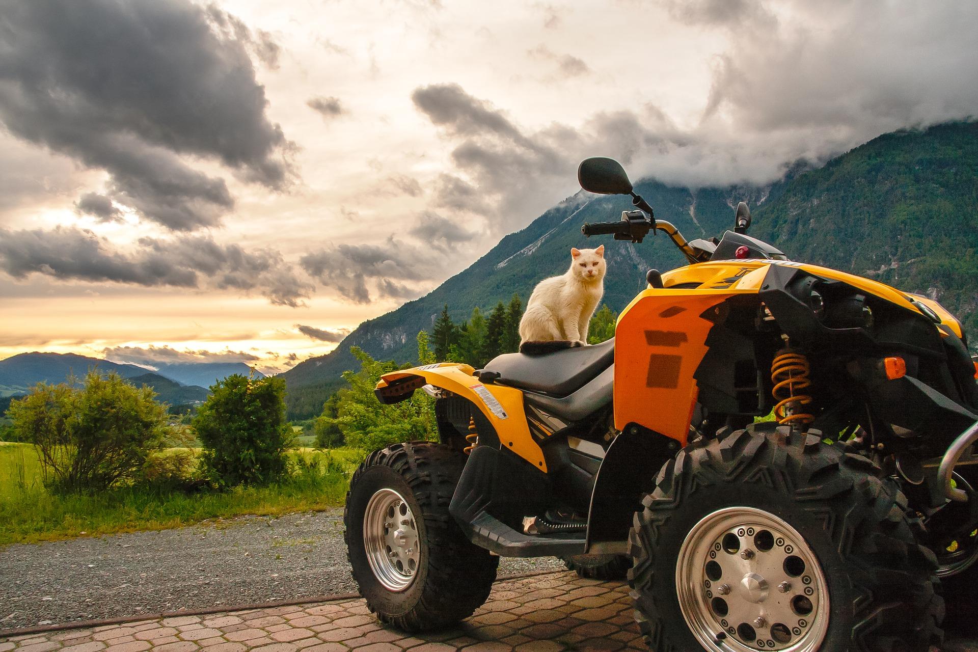 Quad Tour ab 69,00€ durch die Eifel bei Koblenz