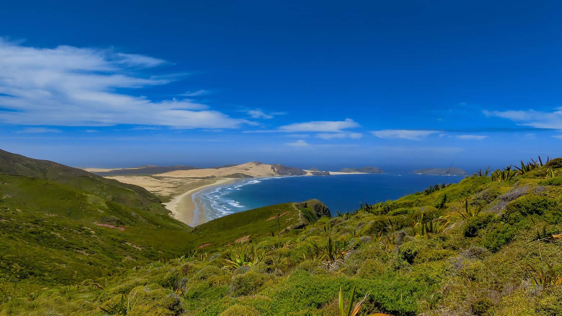 So wunderschön ist es am Pazifik - Neuseeland