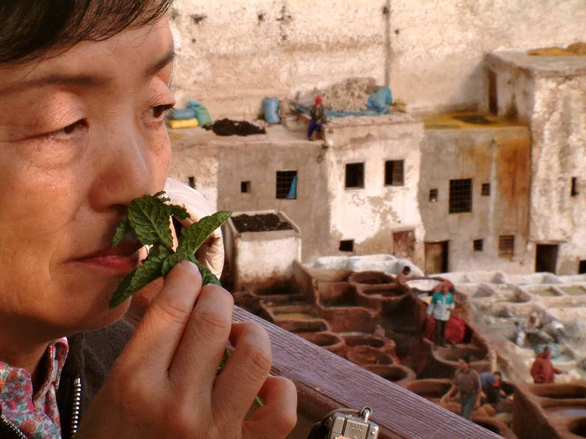 Während einer Städtereise nach Fez aufjedenfall genügend frische Minze trinken