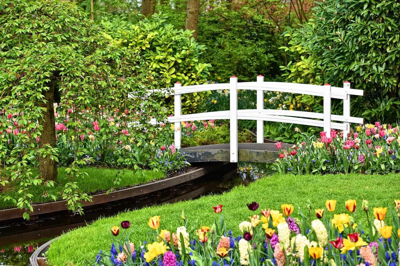 Im Garten Europas über 800 Tulpenarten blühen hier
