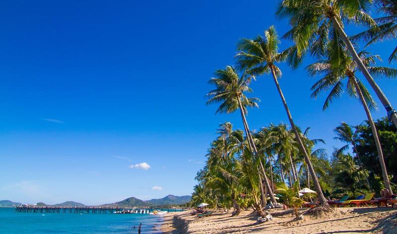 Manaem Beach Hotels in Koh Samui - Coco Palm Beach Resort ein Zimmer nur 26,00€ ob alleine oder zu 4