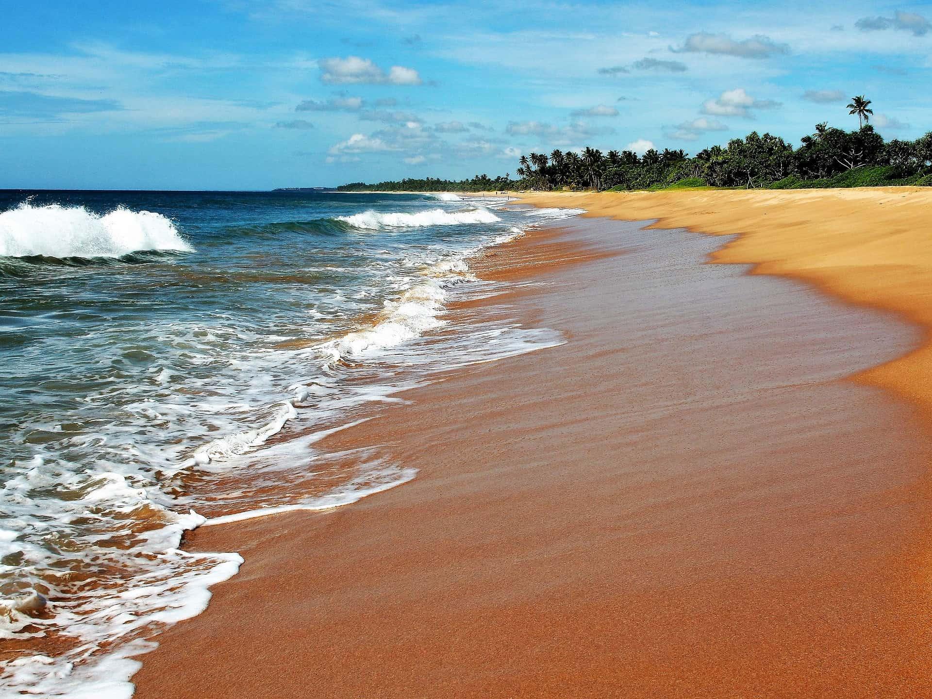Reisetipps Sri Lanka - 10 Tage Urlaub ab 690,65€