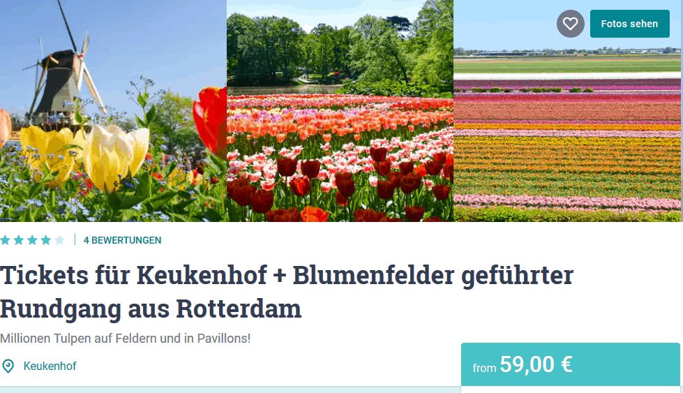 Screenshot Deal Keukenhof - Tulpenblüte Holland nur 59,00€ Tagesreise ab Rotterdam