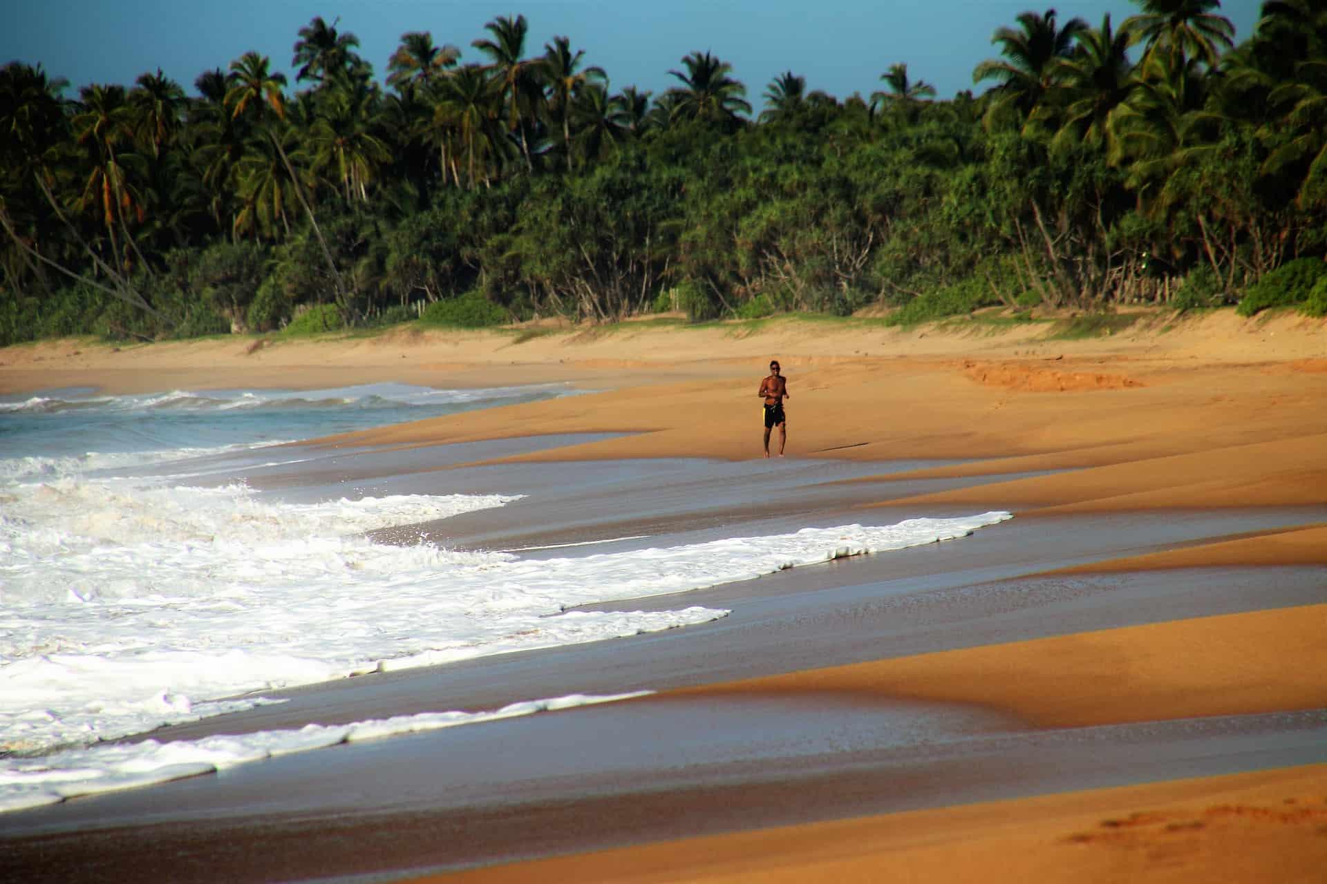Sri Lanka Flüge nur 529,98€ Hin & Rückflug - Flug nach Colombo