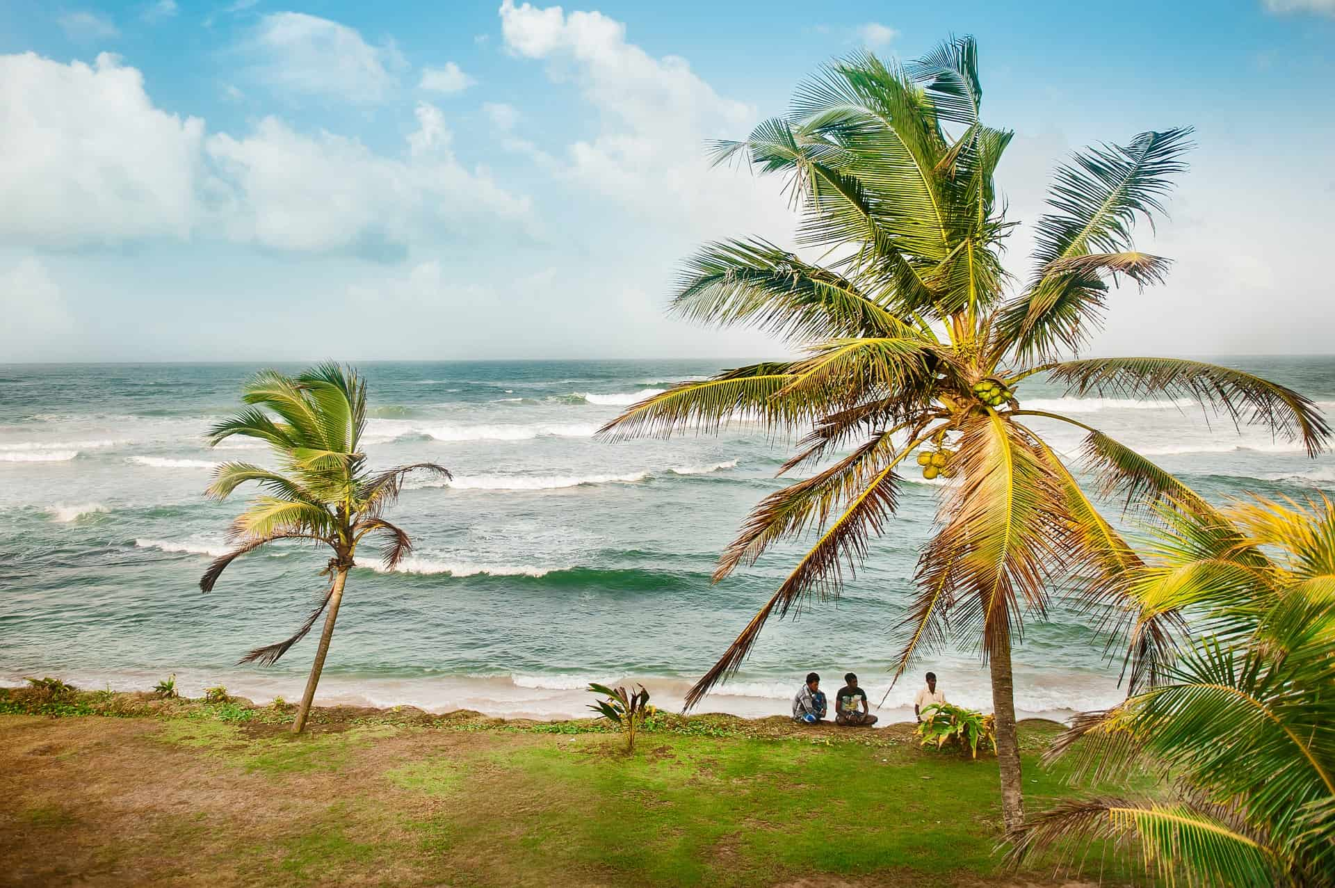 Westküste Sri Lankas geht ziemlich wild zu