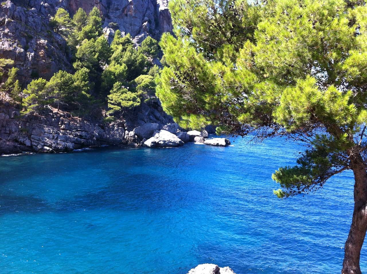 Malle Deals ab 174,00€ - Mallorca Urlaub Cala Ratjada im Sale