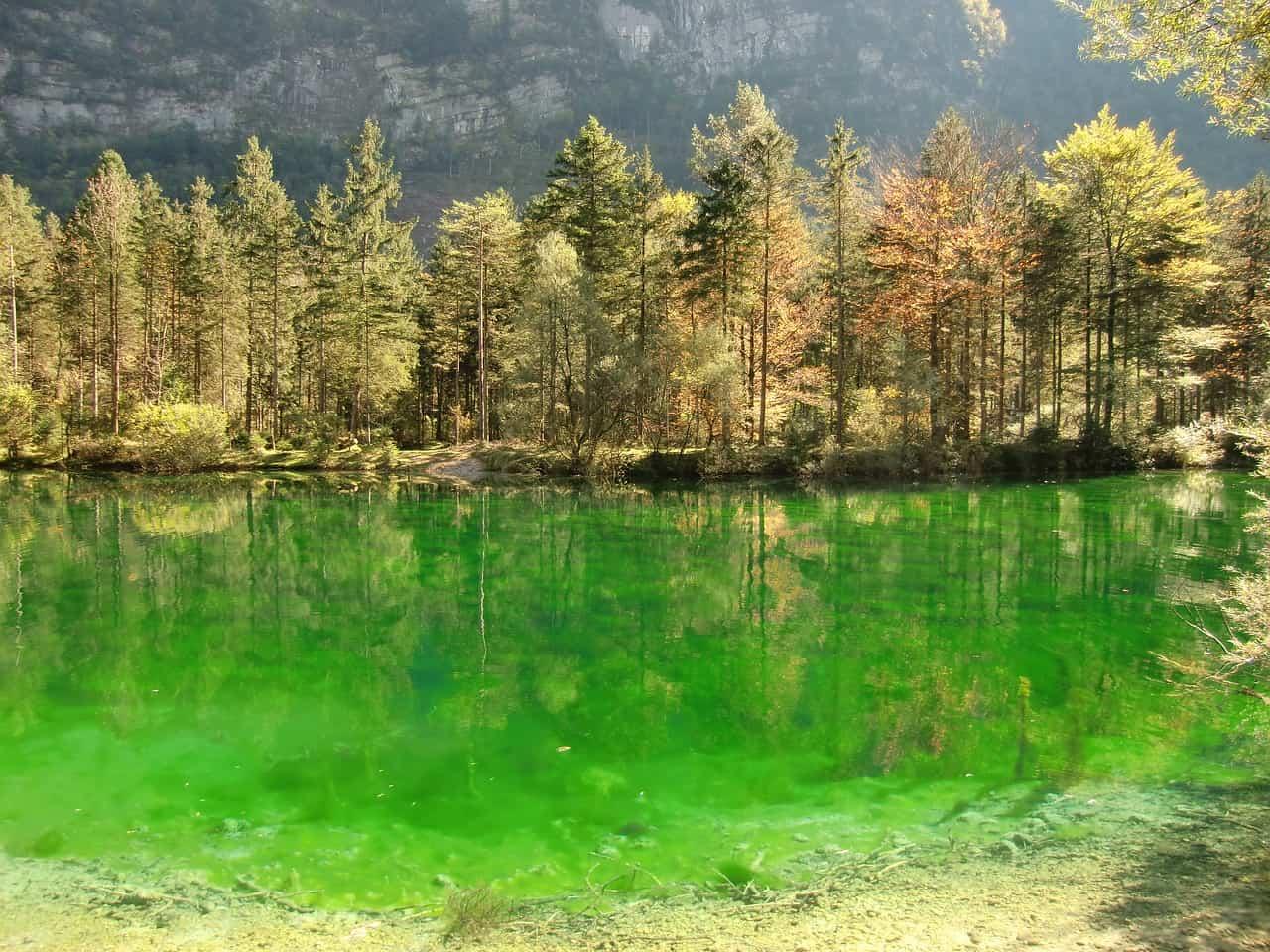 Salzburger Land Urlaub - in den Bergen nur 194,00€ All Inclusive