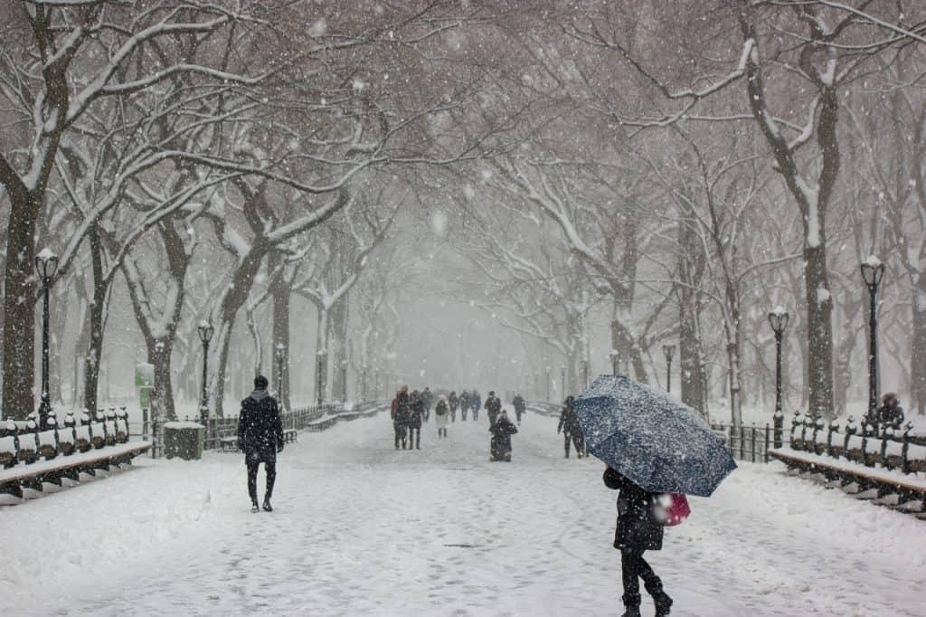 Central Park im Winter