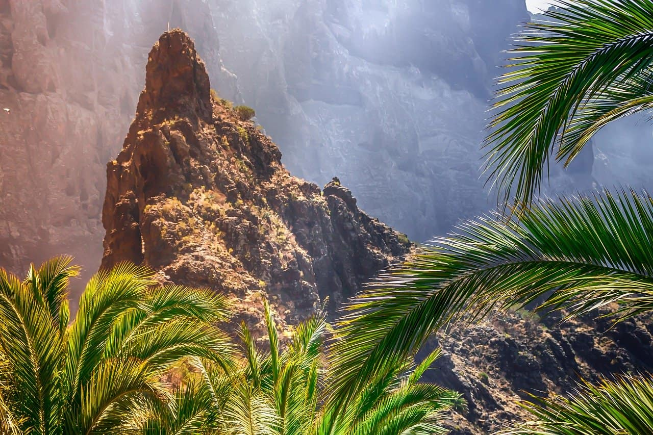 Coral Los Silos - Pauschalreise nur 190,00€ Teneriffa Süd