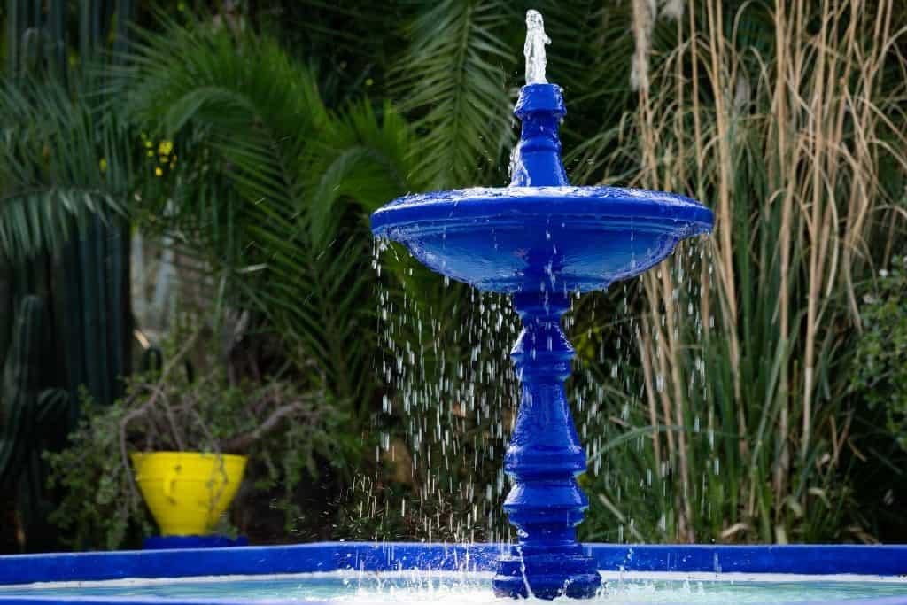 Jardin Majorelle eine blaue Villa umhüllt von dem schönsten Garten - ein Garten mit 300 Pflanzenarten aus 5 Kontinenten