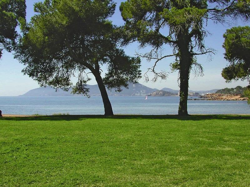 MAGIC Life Club Urlaub auf Ibiza unsere Empfehlung
