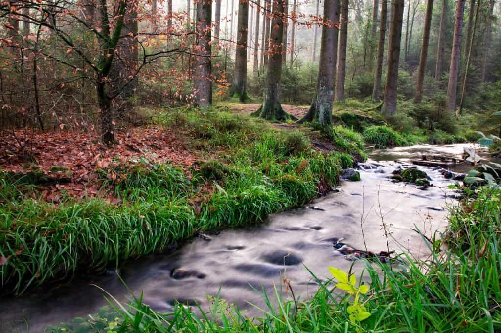 Der Teutoburger Wald lädt ein zu gemütlichen Spaziergängen mit einer atemberaubenden Aussicht