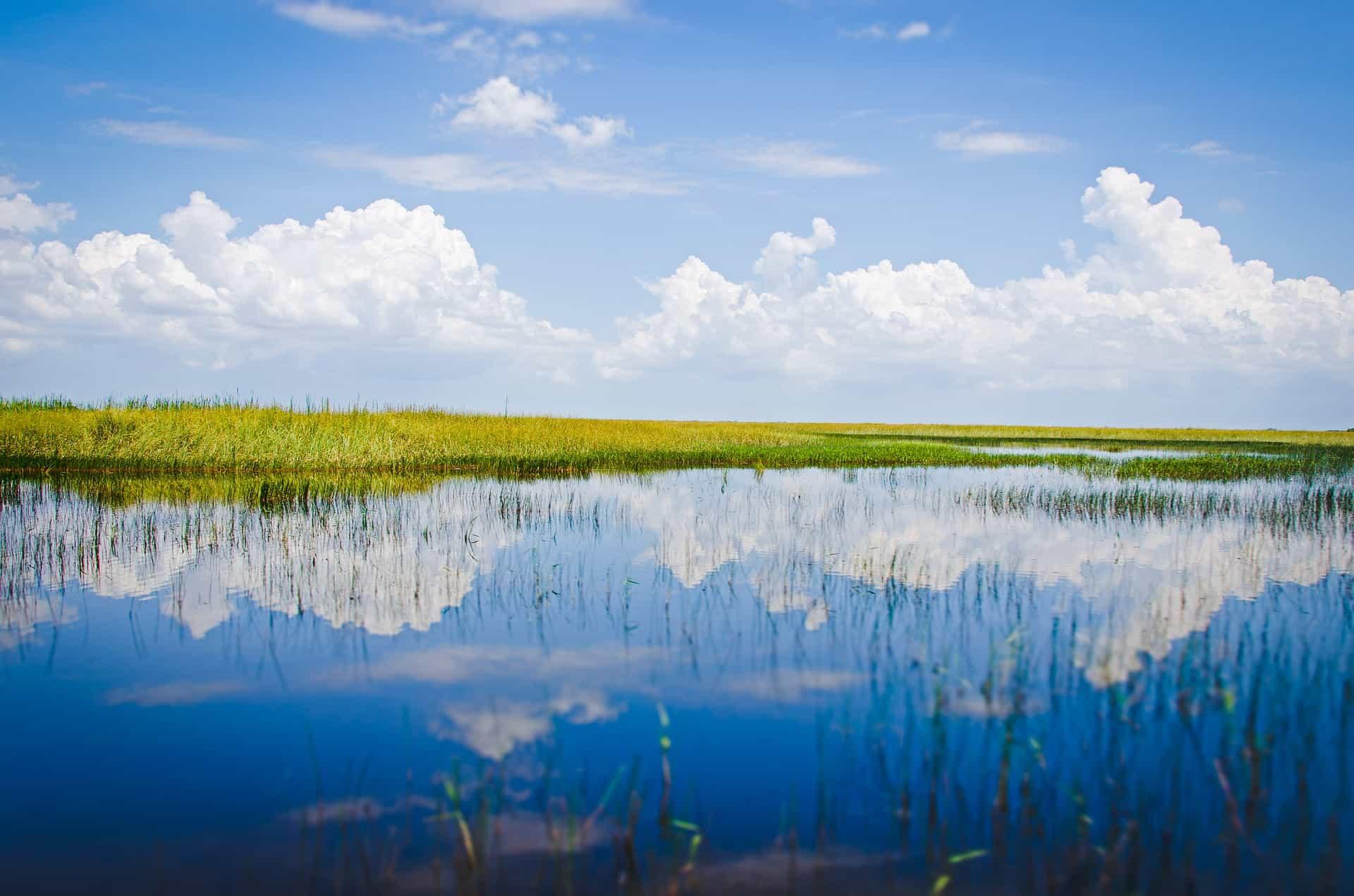 Everglades - der beste Ausflug