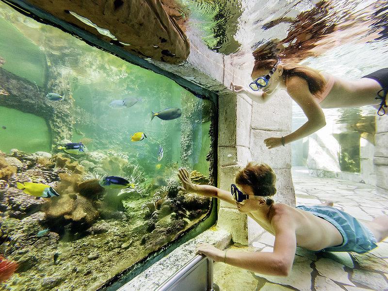 Schnorcheln im Aqua Mundo