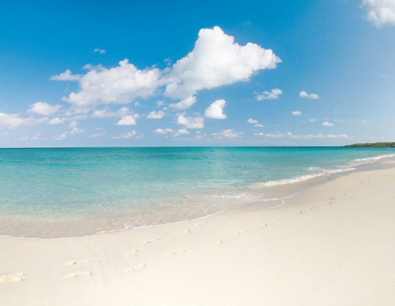 feiner Sandstrand, welcher flachabfallend ins Meer fällt - perfekt für Familienreisen in der Karibik