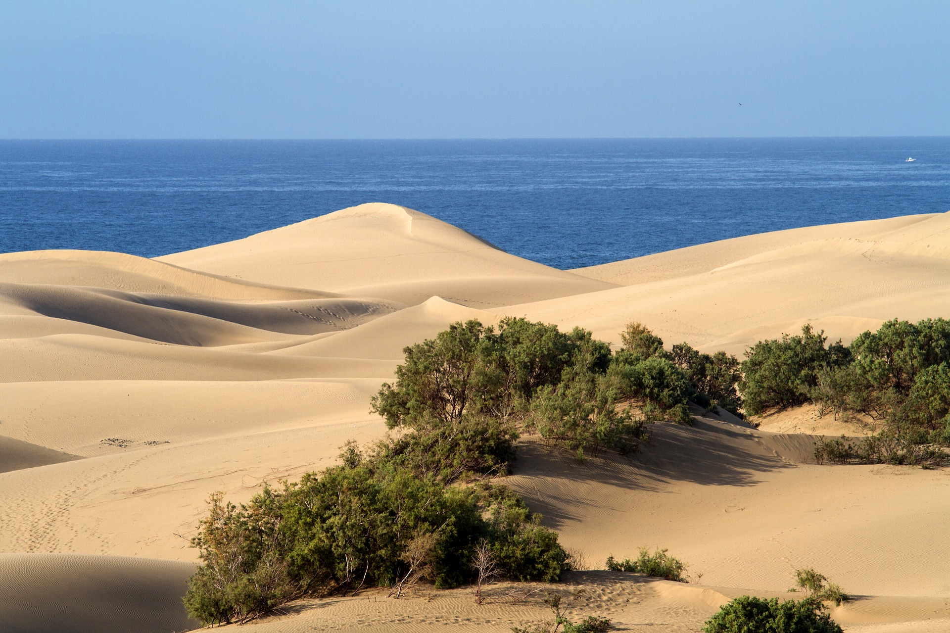Maspalomas Dünen der Süden der Insel