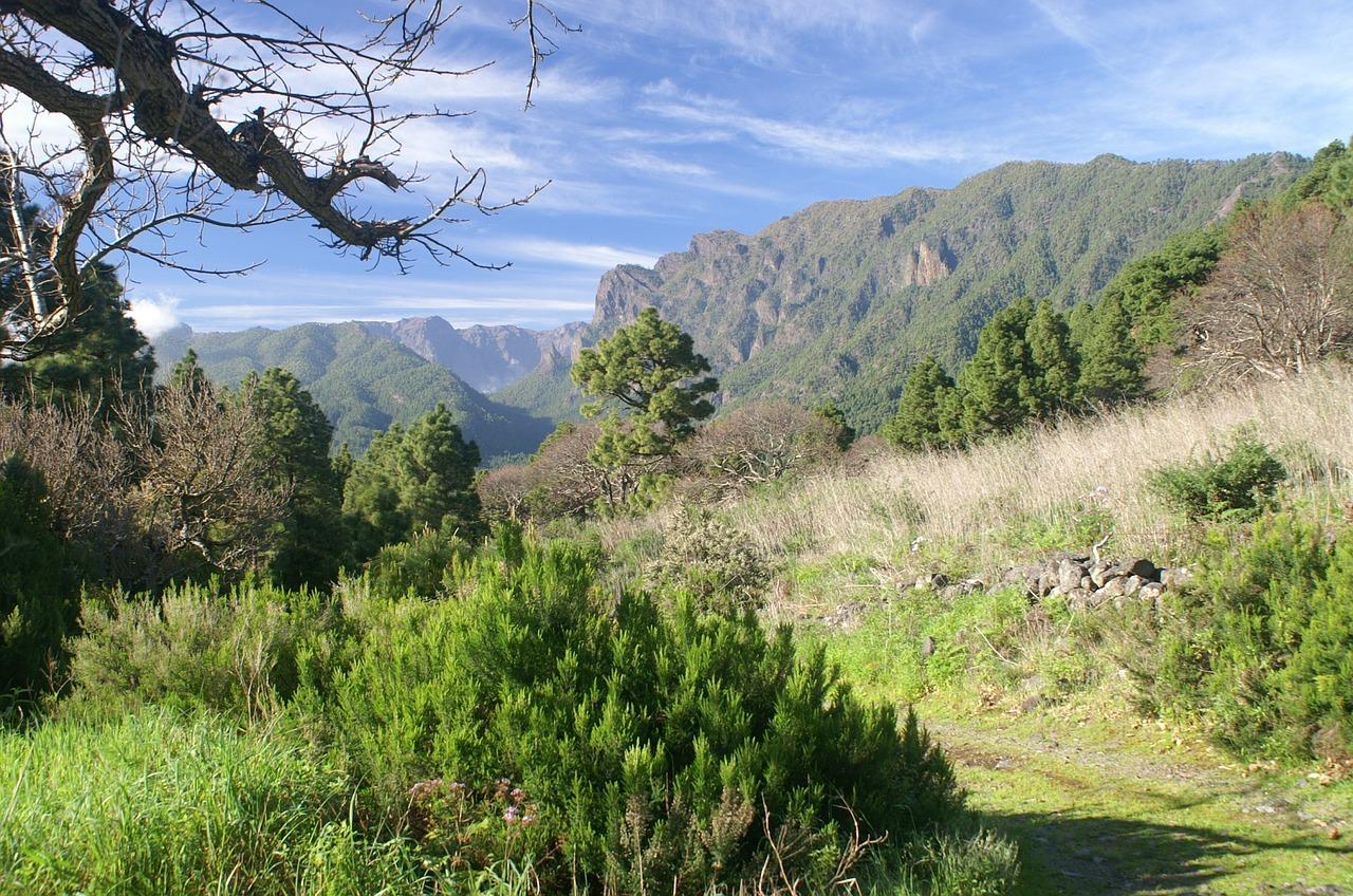 La Palma die grünste Insel auch genannt San Miguel
